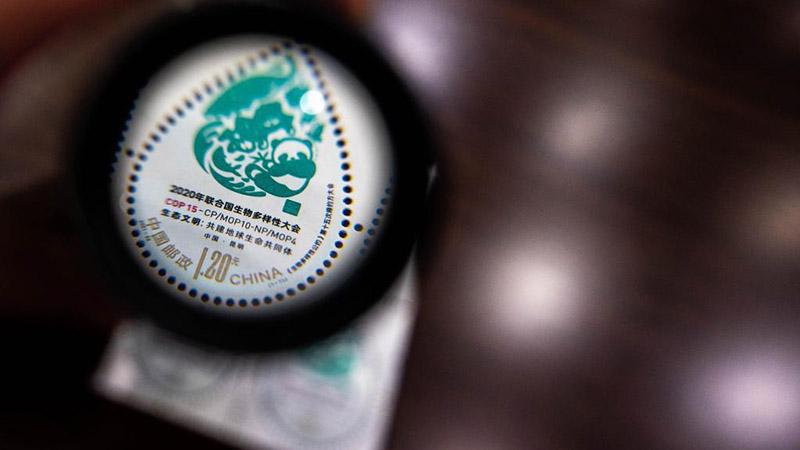 Chine : émission de timbres commémoratifs pour la COP15