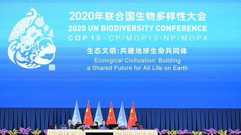 Biodiversité : ouverture de la COP15 au Yunnan